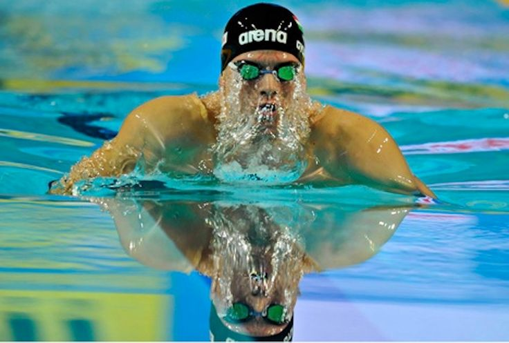 Daniel Gyurta: 1 Gold medal at the 15th FINA World Championships in Barcelona.