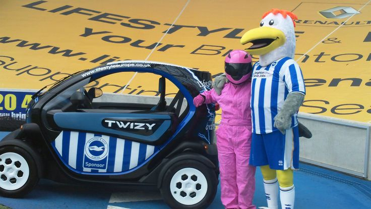 Stig with the Brighton & Hove FC mascot Gully The Seagull #bhafc