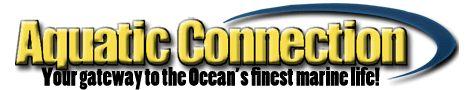 Live MacroAlgae Saltwater Reef Tank Refugium Gracillaria Chaetomorpha Caulerpa:Aquacon.com