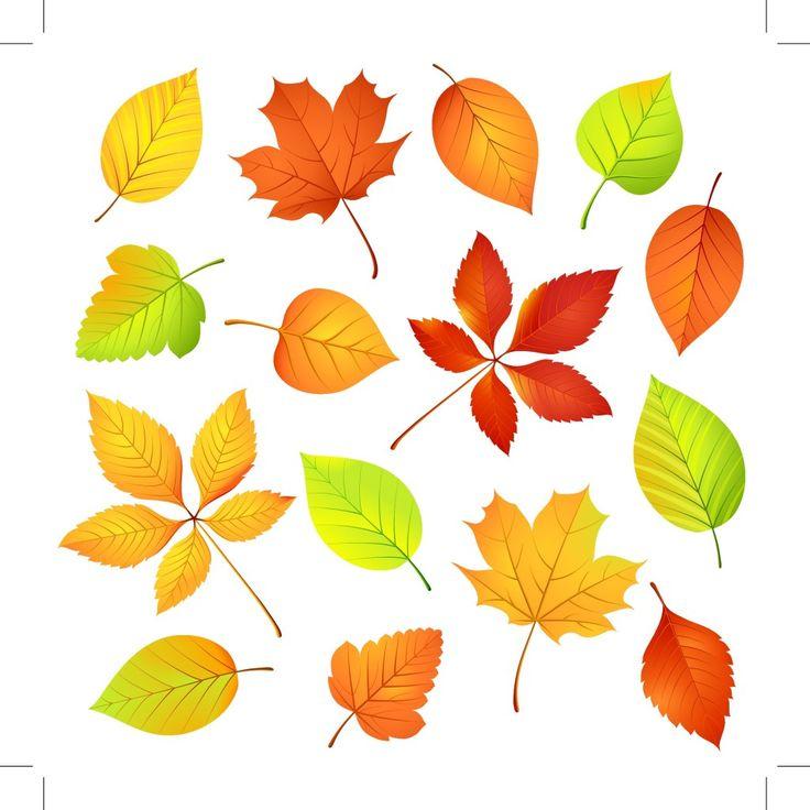 Het is herfst on http://www.jufjanneke.nl/wordpress