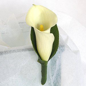 Google Image Result for http://www.nzflower.co.nz/images/wedding_button_hole_calla_cream_med.jpg
