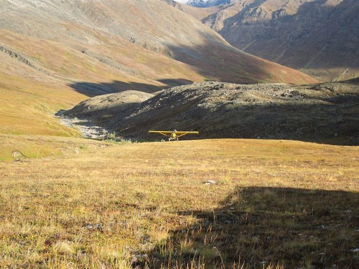 Fly in an Alaska Bush Plane for Wildlife Viewing or to Begin a Hike or Float Trip