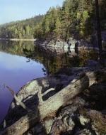 Kolovesi National Park. Savonlinna, Finland.