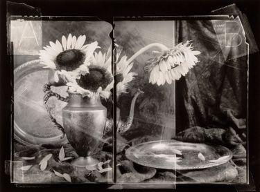 "Saatchi Online Artist Vincent Serbin; Photography, ""Sunflowers with Silver(print no.6, unique)matted"" #art"