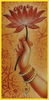 Lotus handInspiration Bloggers, New Inspiration, Namaste, Lotus Hands, Hands Offering, Hands Holding