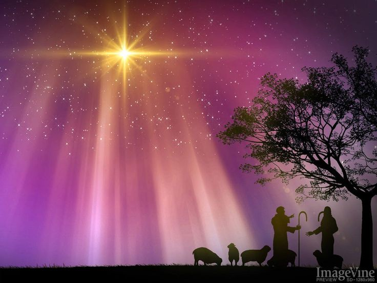 flocks at night christmas story backgrounds