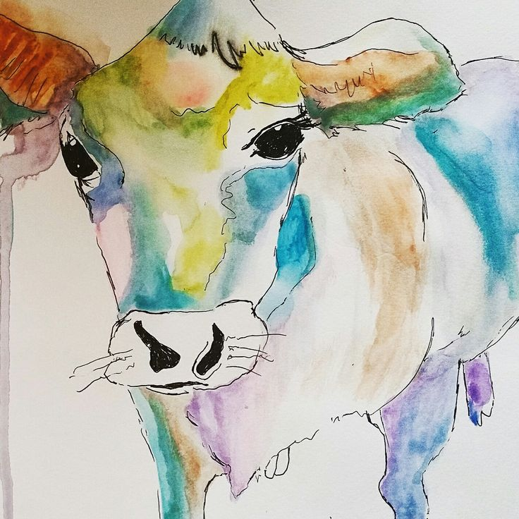 Happy cow Watercolor and ink illustration by Kristan Billing