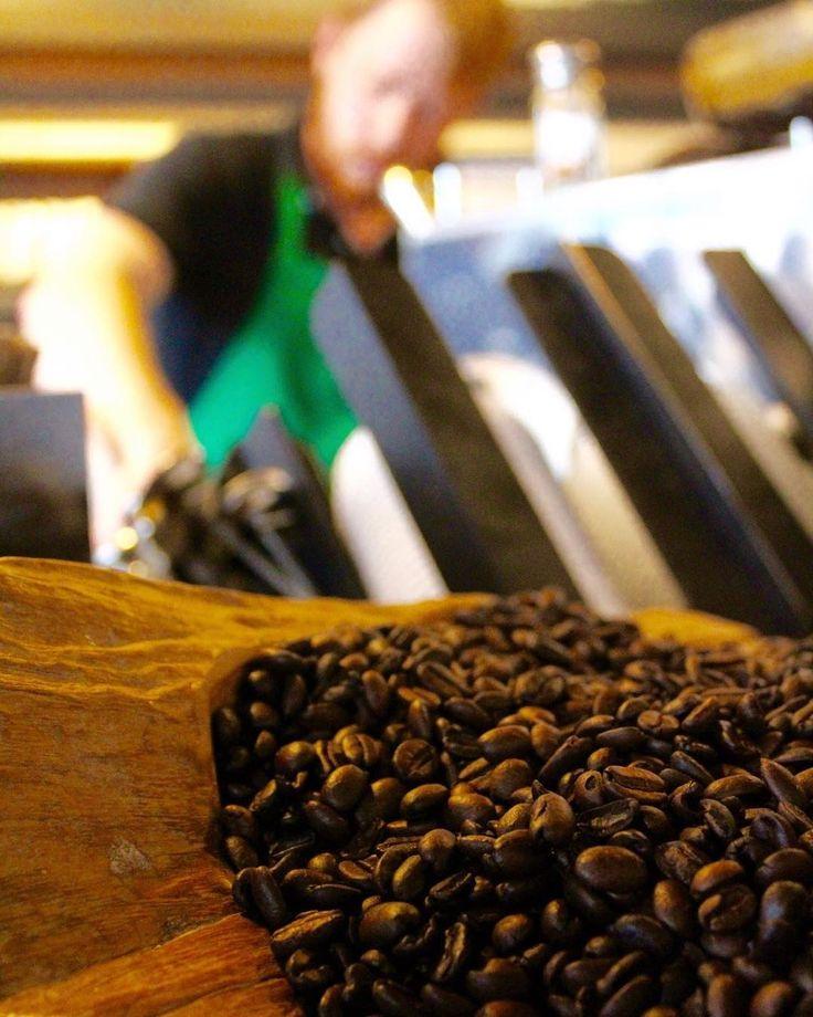 56 best Starbucks images on Pinterest