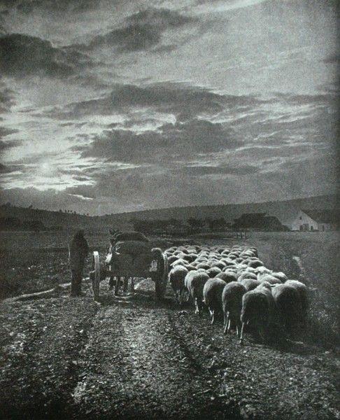 Die Kunst in der Photographie : 1906 Photographer: Maurice Lamarche Title: A la Campagne
