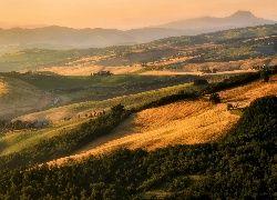 Pola, Łąki, Lasy, Toskania, Włochy