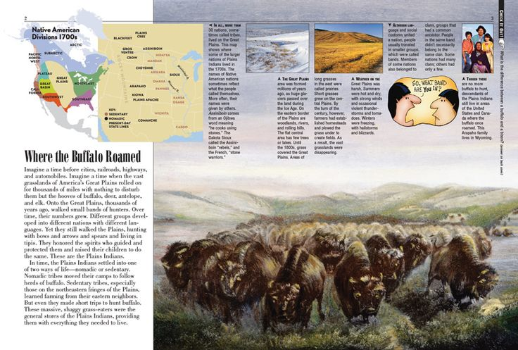 The Golden Age of the Plains Indians, for kids, is explored in memorable detail here, along with the changes wrought by the arrival of Europeans, which included forced migration and land seizure.