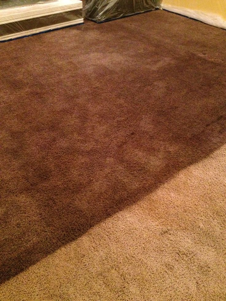 Dying a carpet with RIT dye