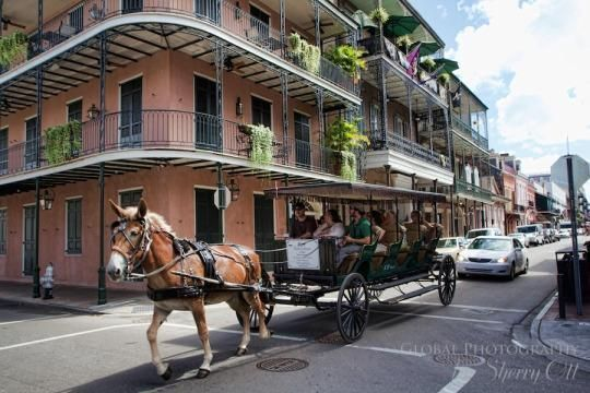 25 best ideas about new orleans tattoo on pinterest new for Tattoo shops french quarter new orleans