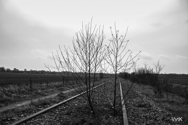 Verlaten spoorlijn #3 | by Viktorvtk