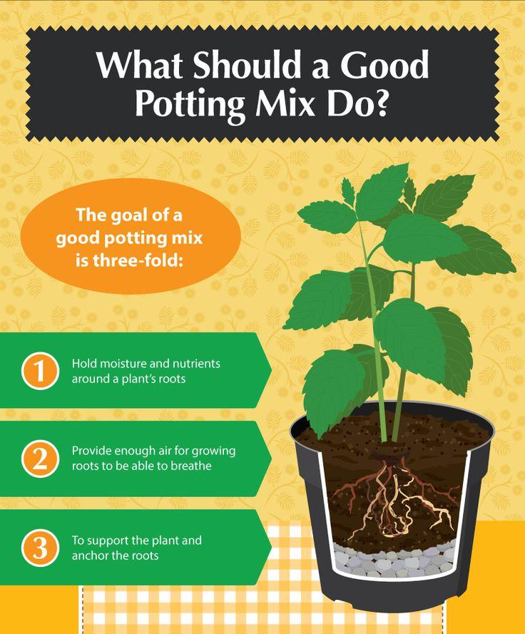 DIY Potting Mixes A Recipe for the Perfect Garden Urban GardeningContainer GardeningPotting SoilGarden