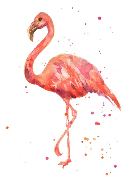 Flamingo print, pink flamingo, flamingo watercolor, tropical bird art Art Print by Eastwitching