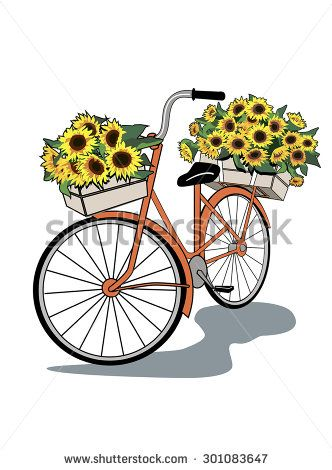 Vintage bicycle with flowers. Sunflower delivery