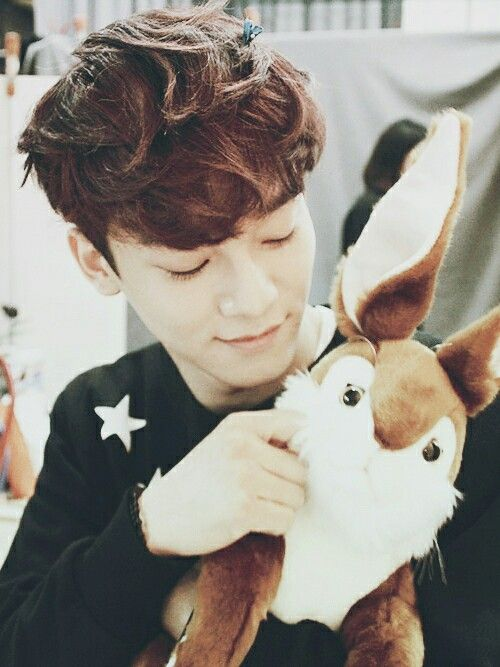 Jongdae and Bunny = Cute overload