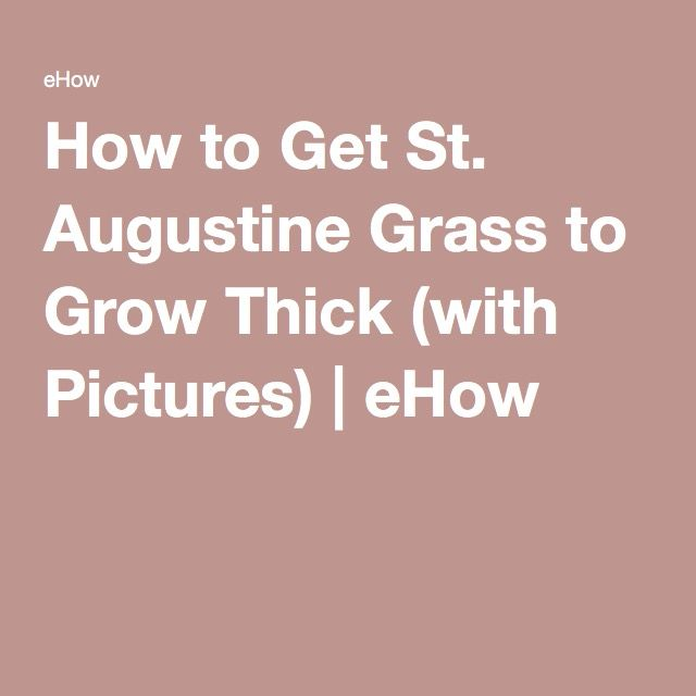 How to Get St. Augustine Grass to Grow Thick (with Pictures) | eHow