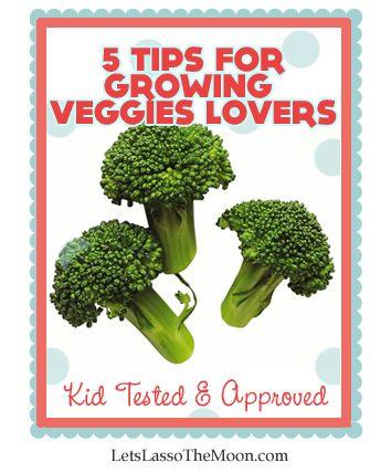 5 tips for growing veggie lovers