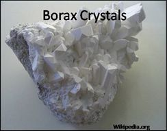 Borax and Boric Acid for Insect Control [228] | David Moore