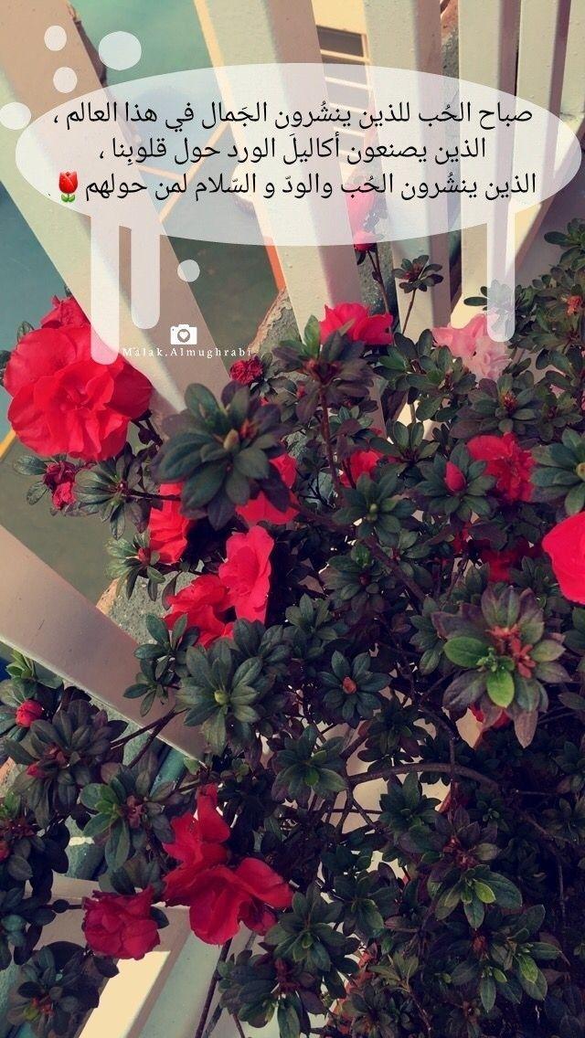 صباح الح ب للذين ينش رون الج مال في هذا العالم الذين يصنعون أكاليل الورد حول قلوب نا ا Good Morning My Love Islamic Wallpaper Romantic Love Quotes