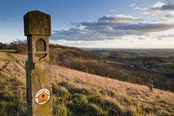 Escape to the Cotswolds : Cotswold Way National Trail, including loop walks using the trail