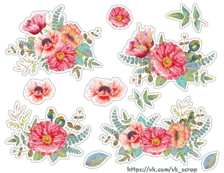 цветы – 1 260 фотографий
