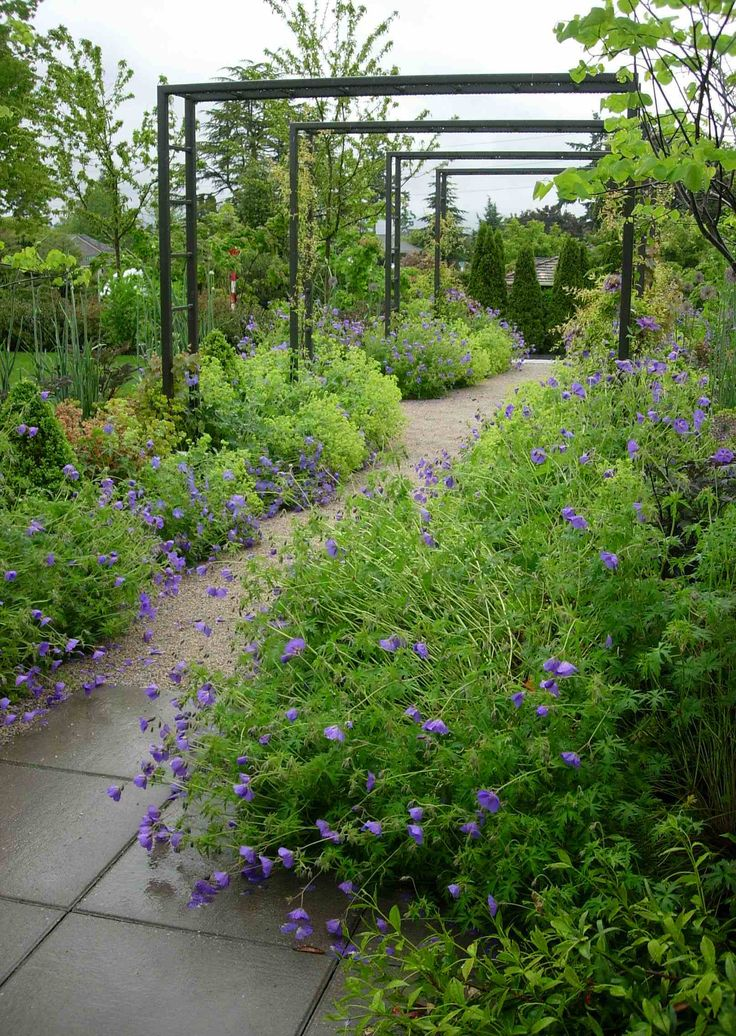 A trellis walkway with a striking contrast between lines of metal and pavers and soft, lush planting.