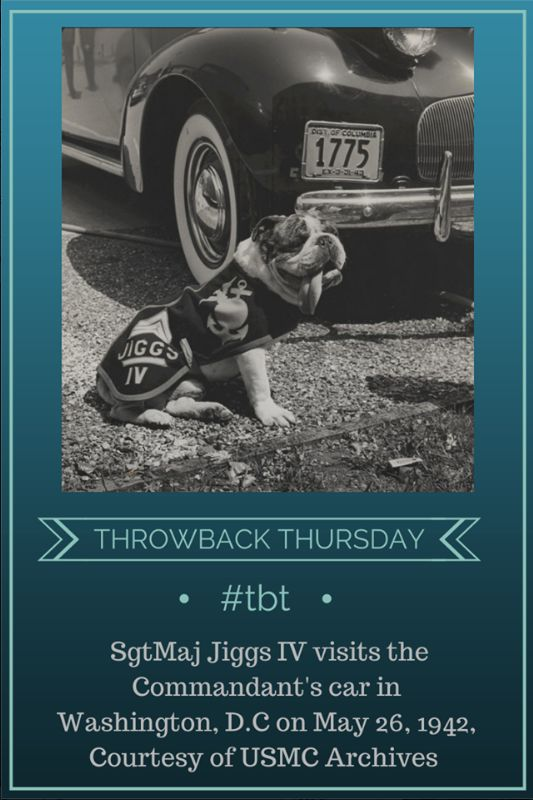17 Best images about Throwback Thursday on Pinterest ...