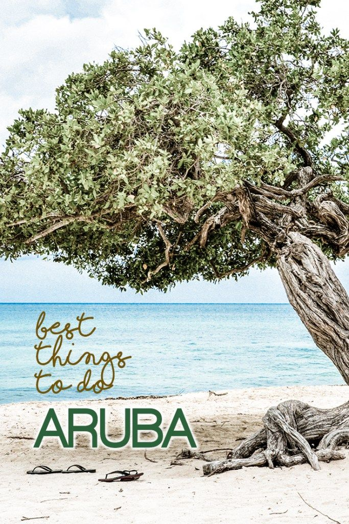 What should you do while visiting Aruba? Here are 12 most amazing things to do in Aruba, the one happy island! Read our post for more.