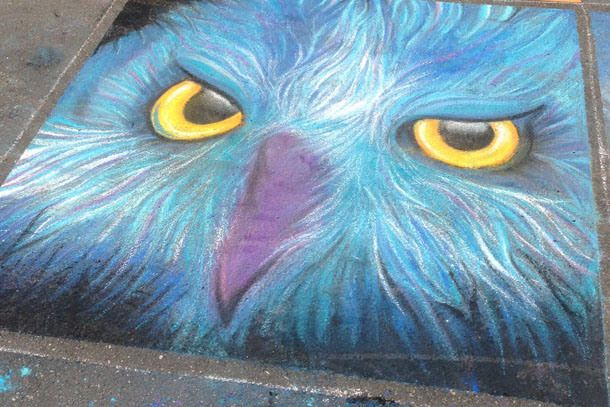 artspark chalk drawing | owl