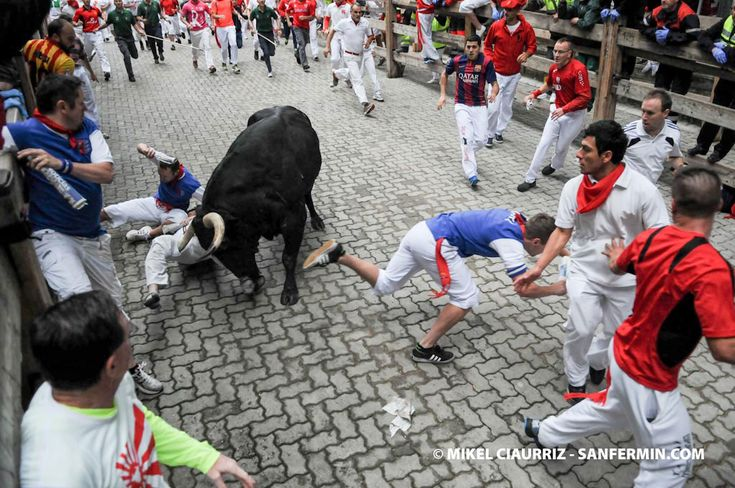 """American Author of """"How to Survive the Bulls of Pamplona"""" skewered in the thigh by bull in San Fermín."""