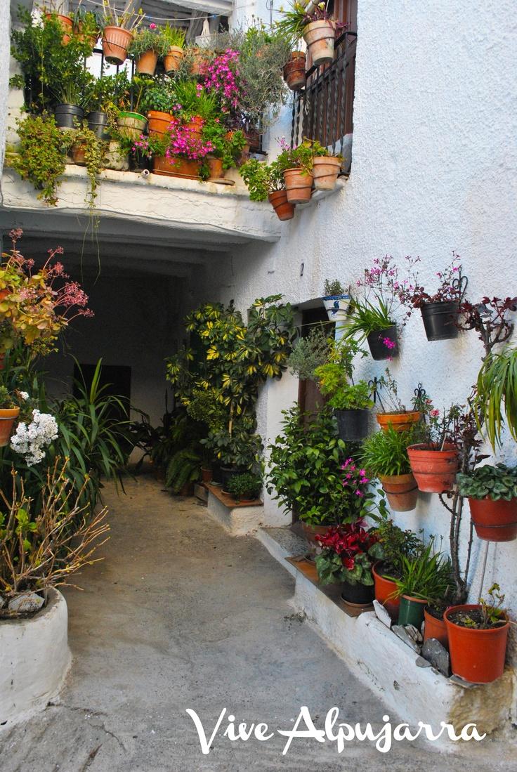 Un rincón inigualable, en la aldea de Mecinilla. Vive Alpujarra