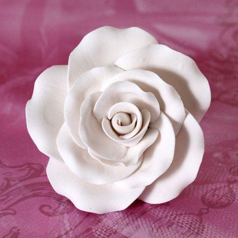 Garden Roses - White | CaljavaOnline