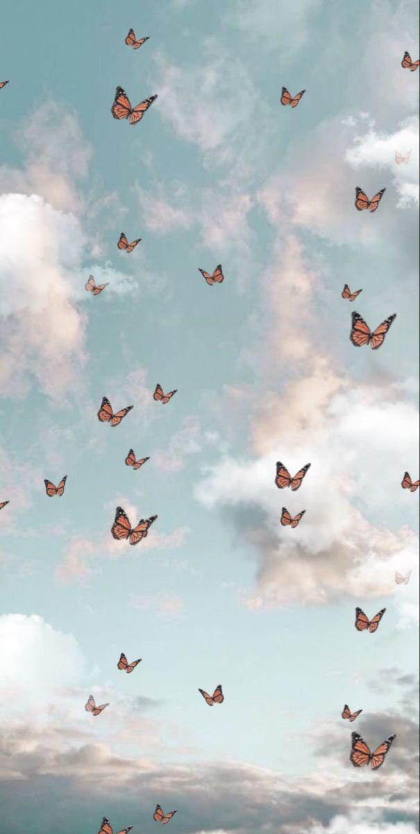 wallpaper butterfly aesthetic clouds wallpaper