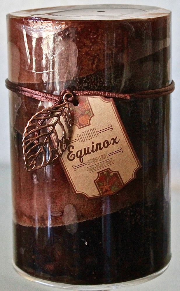 Dw Home Candle Equinox Autumn Leaves Pillar Soy Wax 3 75 X 6
