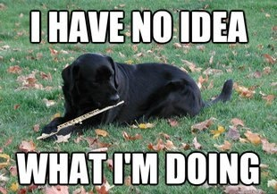Me when the band director starts counting and expects us to know what we're playing.