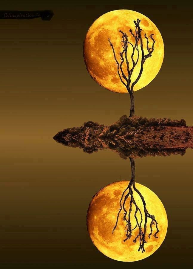 - Golden moon - #moonshine #moonlight #moonpics http://www.pinterest.com/TheHitman14/moonshine-%2B/