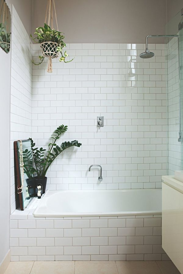 Perching your houseplants on windowsills and coffee tables is so last year, guys. Shower plants are all the rage as the latest way to bring the outdoors into your home, and we're so into it.