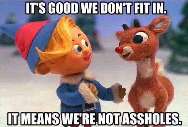 It's good we don't fit in. It means we're not assholes.