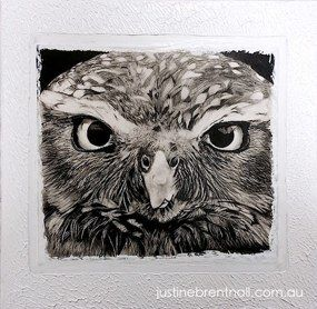 'Owl' Graphite and Acrylic on canvas Art by Justine Brentnall Australian Artist