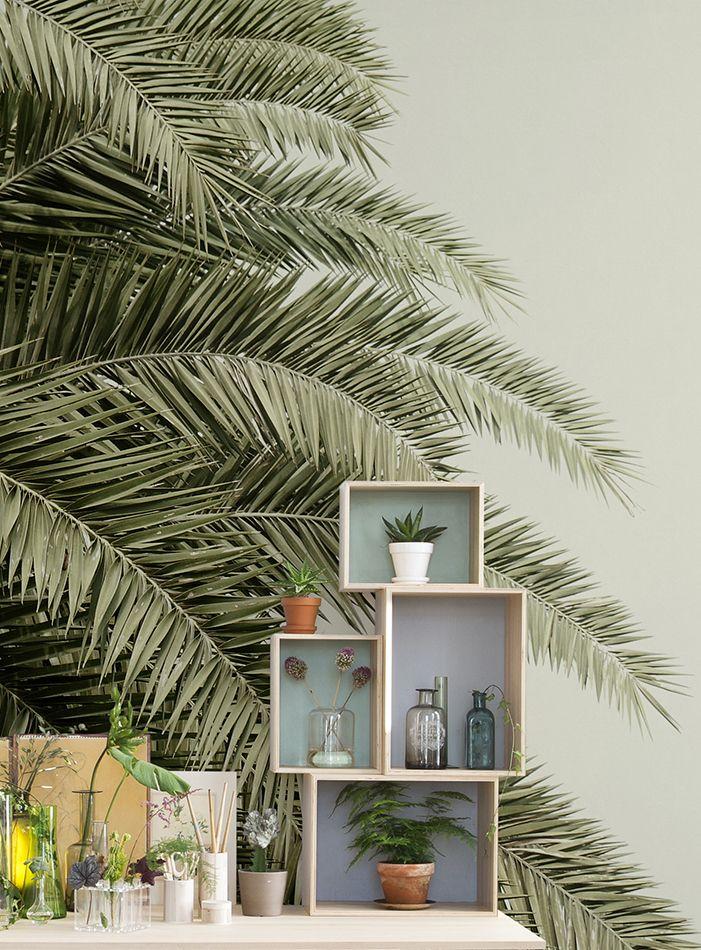 54 best Urban Jungle Tapeten und Inspiration images on Pinterest - tapete für schlafzimmer