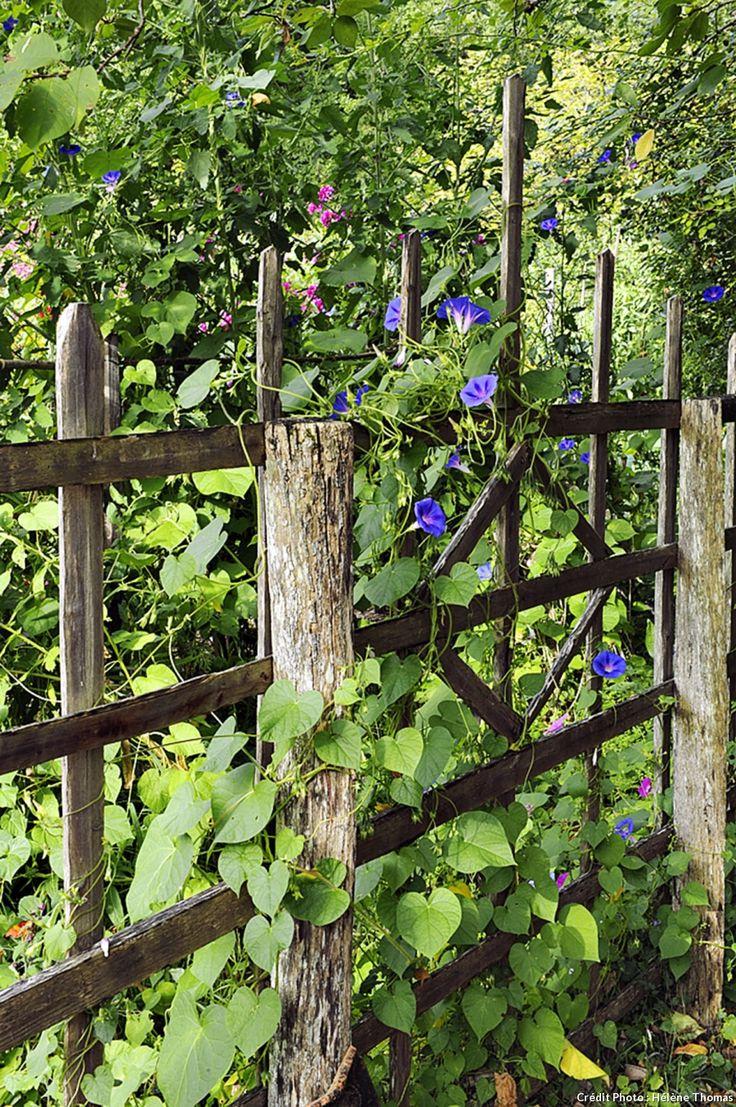 Un jardin fleuri et parfum au coeur du p rigord for Jardin fleuri lyon 9