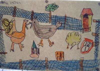 Kippenhok tekenen