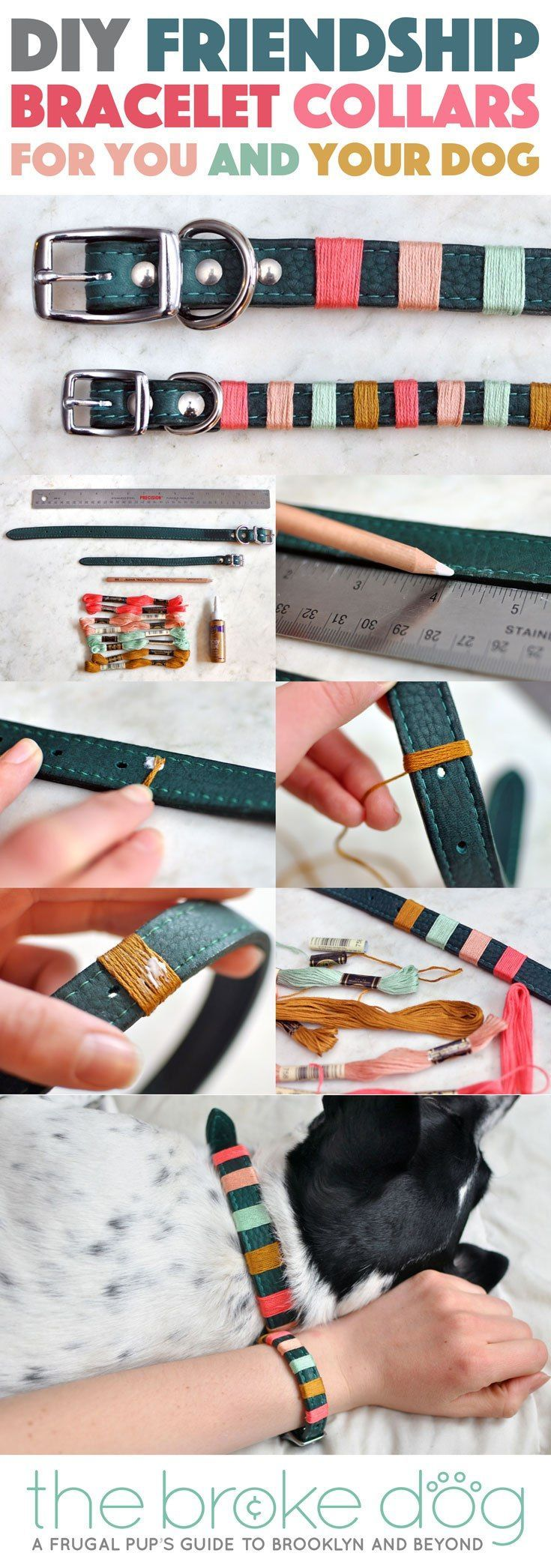 """You may have seen some really amazing """"friendship bracelets"""" for you and your dog from companies like Friendship Collar or Bearytail Leather Company, but are itching for something a little more personal. With just some simple materials and a few minutes, you can make your very own DIY friendship bracelet collars!"""