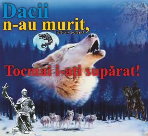 Dacul Mailo: Dacii n-au murit, tocmai i-ați SUPĂRAT!!!