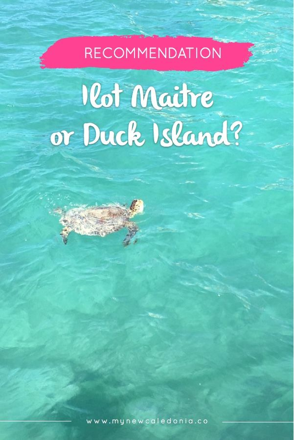 Looking for things to do in Noumea? Hesitating between Ilot Maitre or Duck island? Which one is better? If you are on a short trip to Noumea when this article is for you. https://mynewcaledonia.co/travel-tips/ilot-maitre-or-duck-island