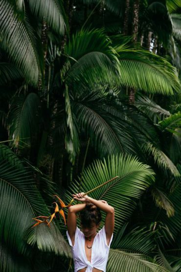 Blog : Vibrations tropicales