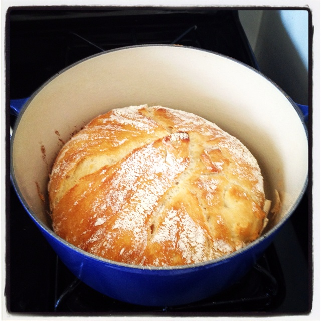 No knead bread; NYT recipe - I got this recipe from my Norwegian teacher in college - she would make her class baked goods on most Fridays. we were all in love with her.